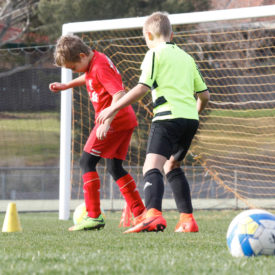 VIC Soccer Camp, Bentleigh Eastusselton