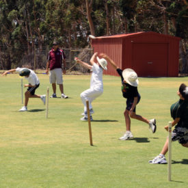 ASC Cricket Camp in Sydney