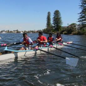 NSW Rowing Australia Program